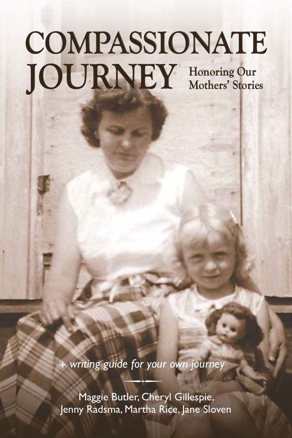 book cover of Compassionate Journey