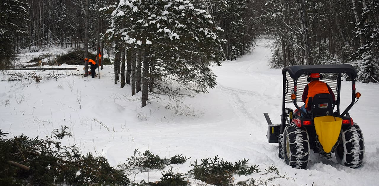 students use heavy equipment in the woods during winter