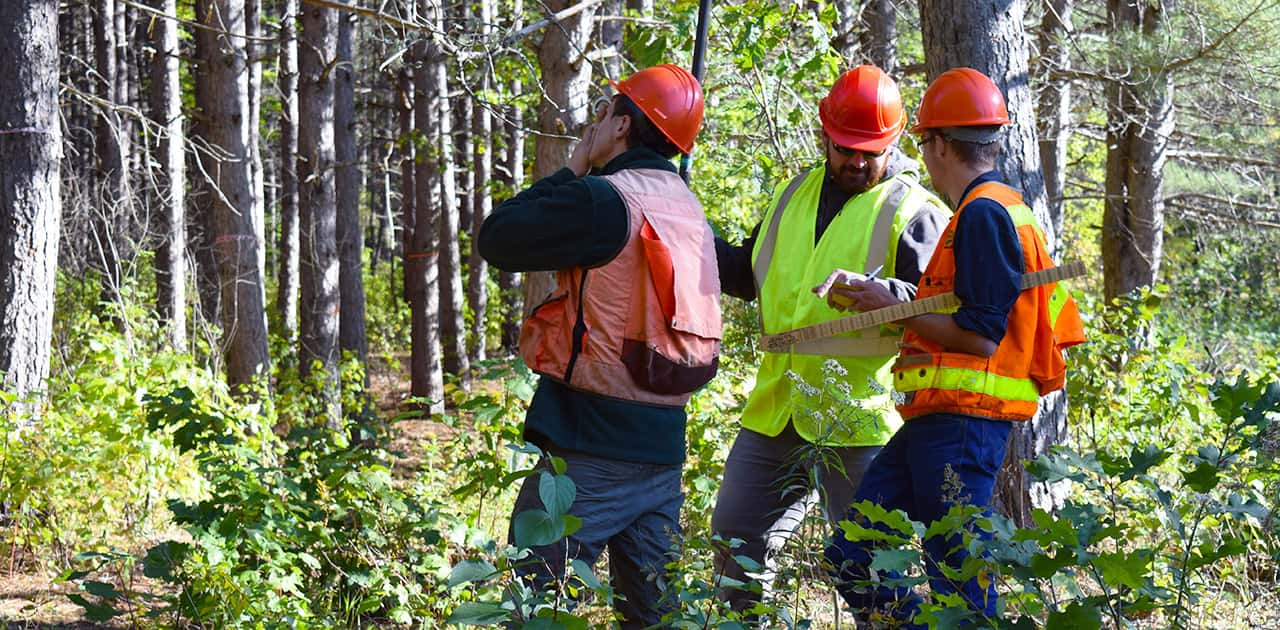 forestry students practicing surveying